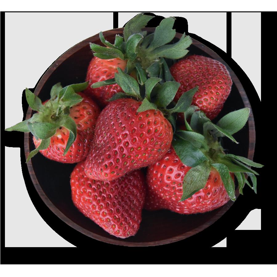 Erdbeeren Obstbauer Haller